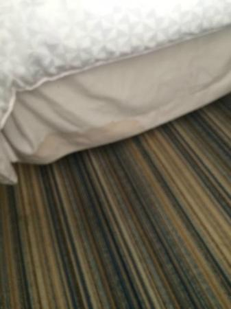 Four Points by Sheraton Philadelphia Airport: One example of bed skirts.