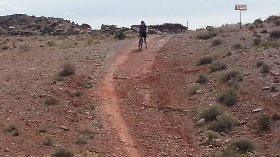 Moab Brand Trails