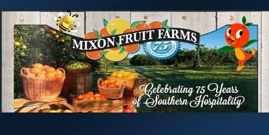 The oranges, grapefruit, tangerines, tangelos, lemons, juice and fruit and fudge gift baskets sent all over the world that have made Mixon Fruit Farms famous are just part of the story now.
