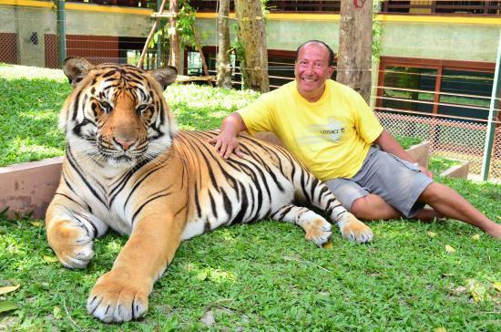 Swiss Villas Panoramic: mon experience avec les tigres tout pres de l'hotel