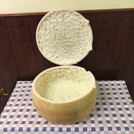 Il Torchio : Forma di Parmigiano per cappelletti in brodo