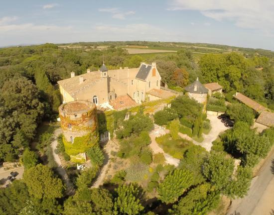 Charming Chateau: Château Hermitage de Combas vue générale