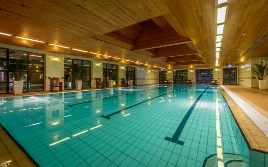 Castletroy Park Hotel: Swimming Pool