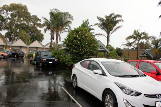 Tropicana Motor Inn: Inside area