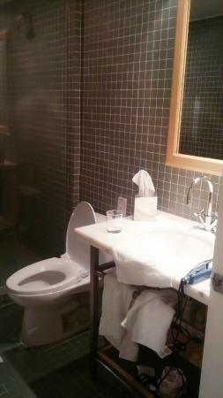Stiles Hotel By Clevelander: Sink and toilet