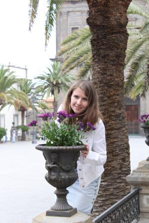 Plaza de Santa Ana: цветы на площади