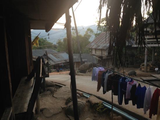 Thailand Hilltribe Holidays Homestay: THAILAND HILLTRIBE HOLIDAYS