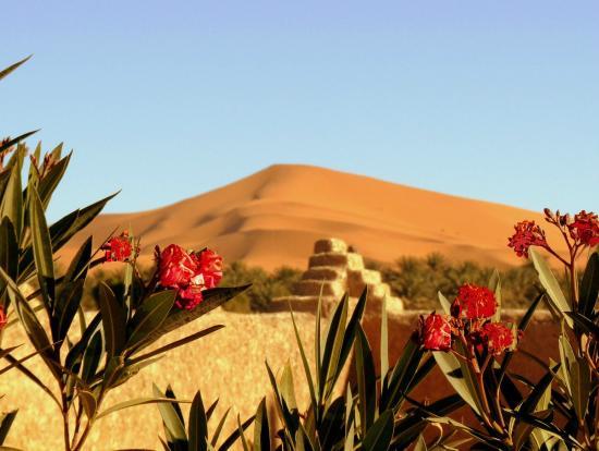 La Vallee des Dunes: Vue depuis la terrasse
