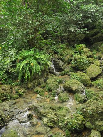 Sueyoshi Park: Little waterfall