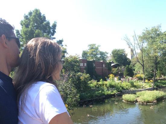 Garfield Park Conservatory: Comtemplando a natureza