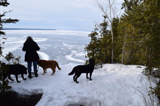Lion's Head, Kanada: Walking with the dogs around the Georgian Bay via Lions Head Park