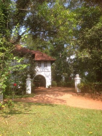 Serenity at Kanam Estate: Approach