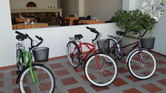 Hotel Palma Blanca: Alquiler de Bicicletas