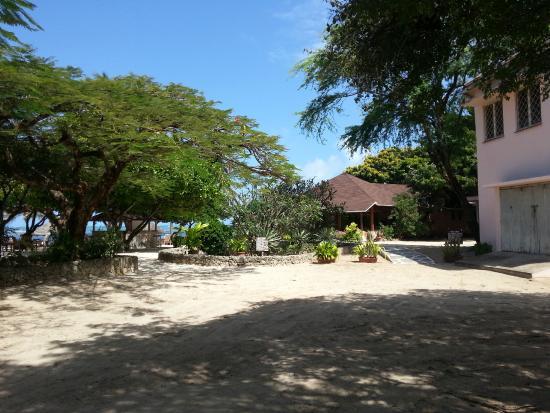 luna house malindi bewertungen fotos preisvergleich kenia