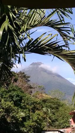 Mayol Lodge : Vista desde la ventana habitacio 12