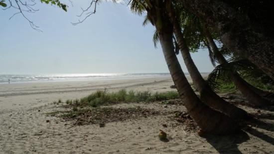 Playa Hermosa: Strand
