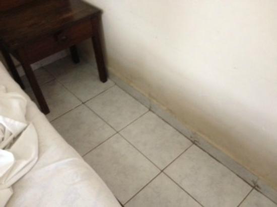 Camburi Hotel : Mofos e fungos nas paredes