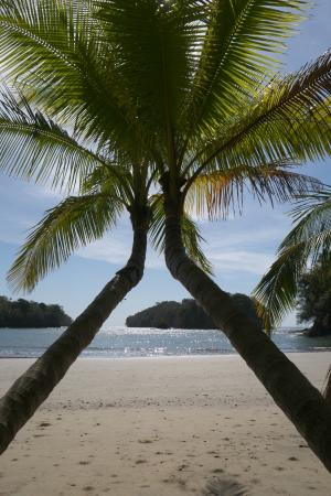 Pacific Bay Resort: Our private beach; wish you were here!