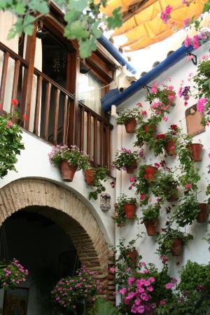 Los Patios del Alcazar Viejo : Casa Patio San Basilio 17