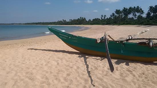 Villa Lanka Pearl : Traumhafter Palmenstrand