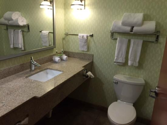 Holiday Inn Express & Suites Atlanta East-Lithonia : Lavabo