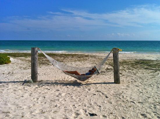 Bishop's Bonefish Resort: davanti al resort, relax sull'amaca