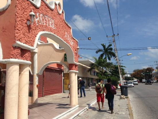 Hotel Alux Cancun: Un poquitito más delante de la palmera está la terminal de camiones, es muy céntrico
