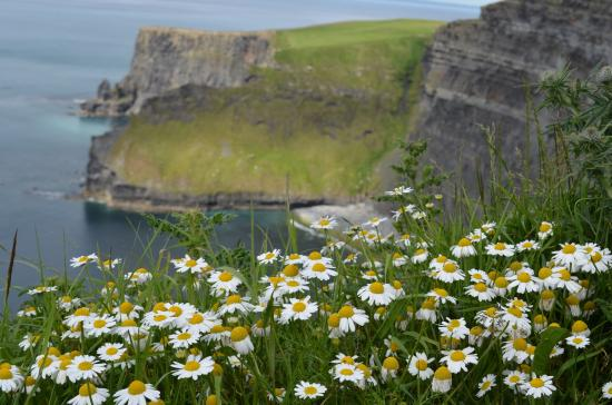 Liscannor, Ierland: Cliffs of moher