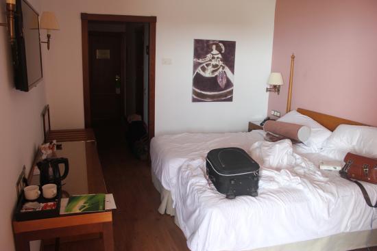 Hotel Fuerte Marbella: Double Room