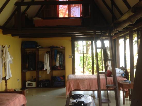 Anamaya Resort & Retreat Center: Gaia .. see my bunk & window at top - lots of space & spectacular sunrises