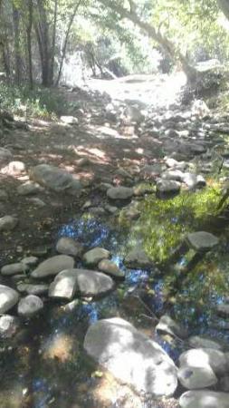 Lake Casitas Recreation Area: Following the creek