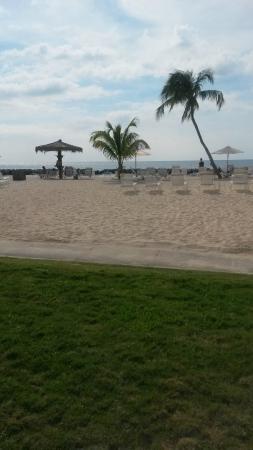 Sunset Cove: Beach area