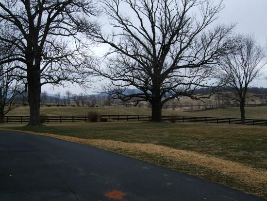 The Marriott Ranch Bed and Breakfast: Winter Pastoral Scenes