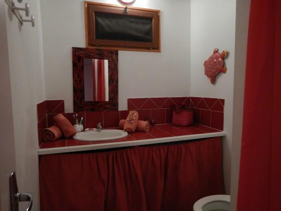 Au Jardin des Colibris: Salle de bain gîte corail