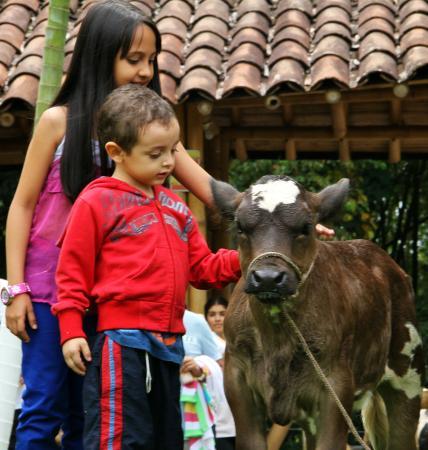 פריירה, קולומביה: Granja de Noé