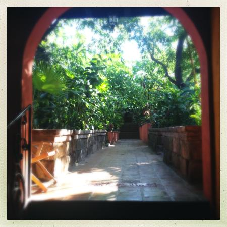 Guesthouse El Nancite : Tropical garden in the back