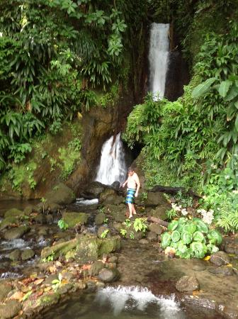 Papillote Wilderness Retreat: Waterfall in Papillote garden