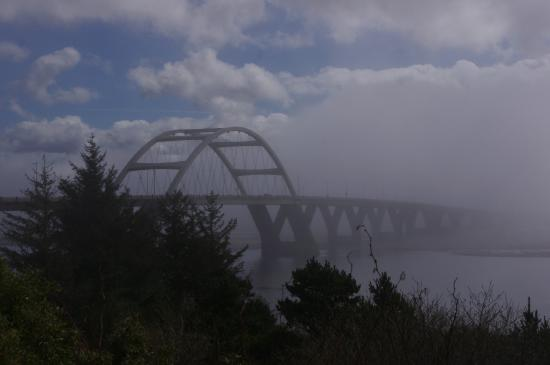 Waldport Newport KOA: Typical Oregon Winter weather,1 end of the bridge in sunshine, the other end disappeared into fo