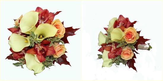Floraria Narcis