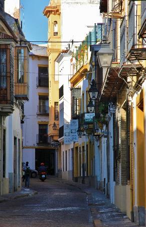 Casa de los Azulejos : Fernando Colon