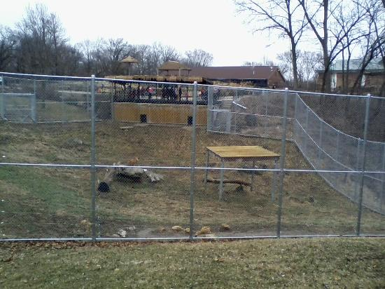 Lion Cage with Giraffe Bldg and Aviary behind it  Picture of
