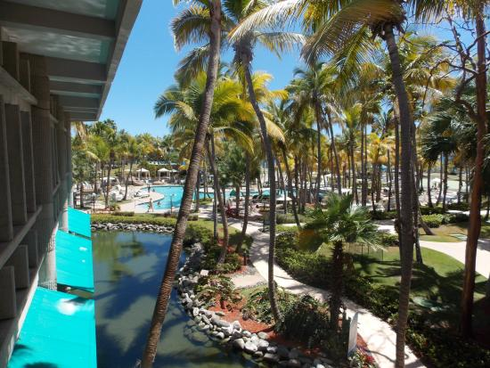 View to Main Pool - Picture of Hilton Ponce Golf & Casino ...