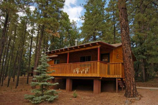 play in snow review of whispering pines resort pinetop
