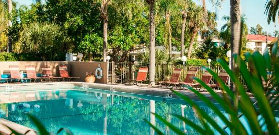 Tropical Beach Resorts Refreshing Siesta Key Pool