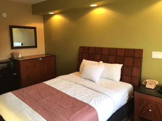 Excel Inn & Suites: 1 queen bed