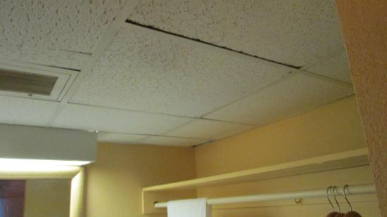 Bad Ceiling Tiles Picture Of Econo Lodge Winter Haven East Winter - Ceiling tile stores near me