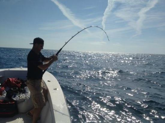 Bent charters amberjack on picture of bent charters for Deep sea fishing johns pass