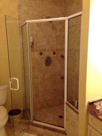 Califon, นิวเจอร์ซีย์: luxurious shower in the Morris