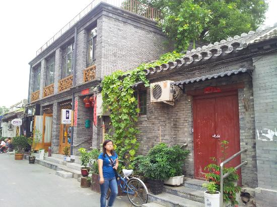 cat cafe sign picture of wudaoying hutong beijing. Black Bedroom Furniture Sets. Home Design Ideas