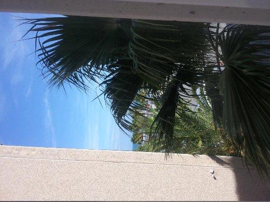 Ibis Budget Alicante: Вид из окна